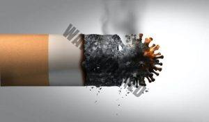 South Africa's tobacco ban